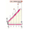 Giro d'Italia 2019: finish profile 13th stage - source: www.giroditalia.it