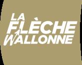 La Flèche Wallonne 2017