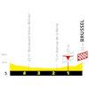 Tour de France 2019 Finale 1st stage: Brussels - Brussels - source:letour.fr