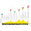 Tour de France 2019 etappe 15