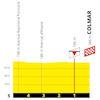 Tour de France 2019: finale 5th stage - source:letour.fr