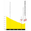 Tour de France 2020: finish profile 18th stage - source:letour.fr