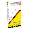 Tour de France 2020: finish profile 20th stage - source:letour.fr